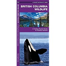 British Columbia Wildlife: A Folding Pocket Guide to Familiar Species (A Pocket Naturalist Guide)