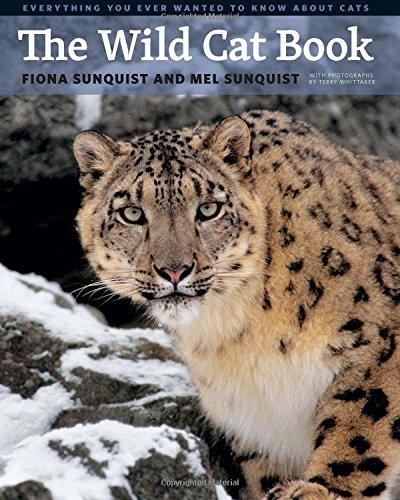 the-wild-cat-book