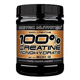 Scitec Nutrition 100% Creatine, 500 grammi