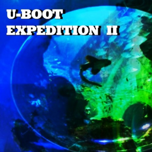 U-Boot - Sonic Search - Cant Identify (Album Version)