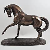Spanisch Pferd
