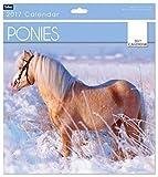 Scarica Libro Calendario 2017 con fotografie di pony di forma quadrata si apre a forma rettangolare modello numero 0569 (PDF,EPUB,MOBI) Online Italiano Gratis