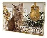Katzen Adventskalender Samtpforte, 1er Pack (1 x 465 g)