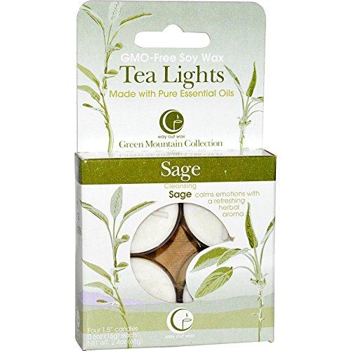 4 Unzen Kerze (Teelichter, Salbei, 4 Kerzen, 0,6 Unzen (16 g) Jeder - Way Out Wax)