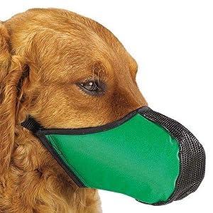 Proguard Muselière pour chien TailleL