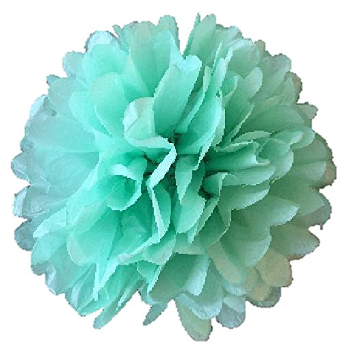 Matissa Paquete de 10 pompones de papel de seda de 25 cm para decoración de...