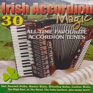 Irish Accordion Magic [Import anglais]