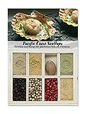 Feuer & Glas Pacific Coast Scallops/ capesante con parmigiano, spezie, ricotta & lista della spesa, 55g