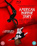 American Horror Story: Season 1 [Blu-ray] [PL Import]
