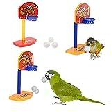 VIDOO Uccelli Da Compagnia 3Pcs Masticare Parrocchetto Bell Palle Pappagallo Giocattoli Birdie Basket Hoop Prop