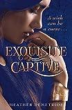 Exquisite Captive: Dark Passage Trilogy (Dark Passage Trilogy 1)