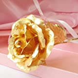 24 K Gold Rose, Miradh Gold Foil Decoration Artificial Rose Flowers in Gift Box with Red Open Heart Pick, Best Gift for Mother's Day, Valentine's Day, Wedding Day, Birthday, Christmas, Thanksgiving, Home Decor