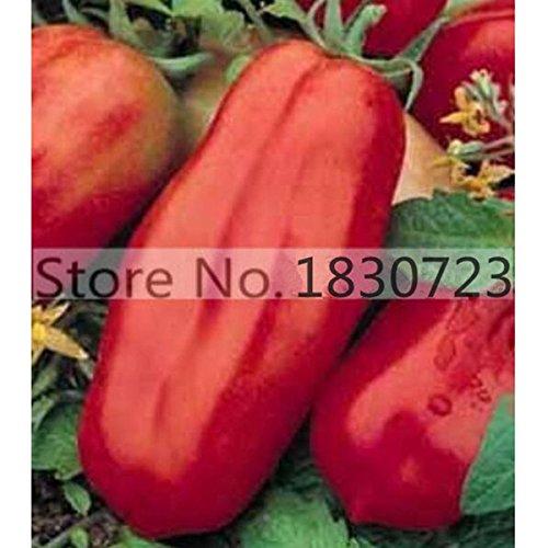 100pcs / bag Regenbogen Tomatensamen, seltene Tomatensamen, Bonsai-Bio-Gemüse & Fruchtsamen, Topfpflanze für Heim & Garten