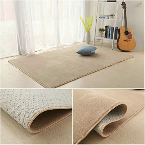 Addensare coral velluto peluche stuoia di tatami piano topper tappeto,area del tappeto antiscivolo-soggiorno camera da letto tappeto comodino piano coperta cuscino stuoia strisciante dei bambini-h 60x160cm(24x63inch)