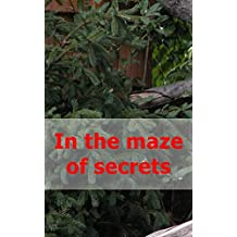 In the maze of secrets (Scots Edition)