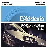 D'addario Phosphor Bronze Wound Banjo Strings