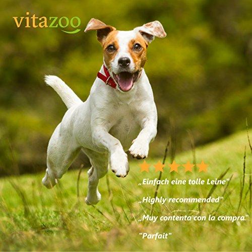 VITAZOO Premium Hundeleine in Graphitschwarz, massiv und verstellbar in 4 Längen (1,4 m – 2,1 m), für große und kräftige Hunde | Hundeführleine, Doppelleine, geflochten mit 2 Jahren Zufriedenheitsgarantie - 5