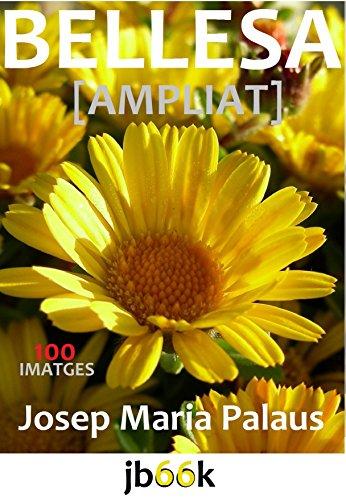 Descargar Libro Bellesa [ampliat] (Catalan Edition) de JOSEP MARIA PALAUS PLANES