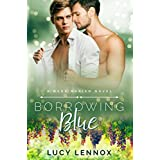 Borrowing Blue: A Made Marian Novel (English Edition)