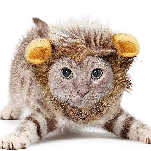 Haustier Katze Halloween Kostüm - Isuper Haustier Kostüm Löwe Mähne Perücke für Katze Weihnachten Halloween Kleidung (S)