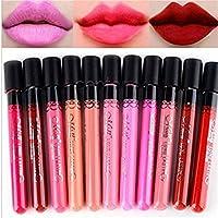 BESTIM INCUK® 10 piezas de belleza maquillaje labios lustre terciopelo mate impermeable cosméticos lápiz labial