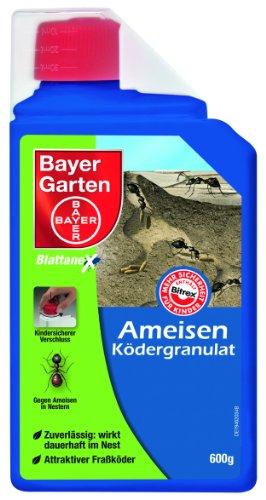 bayer-79451938-control-de-hormigas