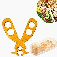 im praktischen und stabilen Kunststoffetui Ern/ährungslehre Betzold 46 Spielkarten Gesunde Ern/ährung mit Farbcode Lebensmittel