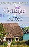 Cottage mit Kater: Roman (insel taschenbuch) von Hermien Stellmacher