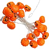 LED Lichterketten, Kürbis Lichterketten Netzteil LED, DIY Dekoration für Halloween/Themenpartys/Karneval/Festival/Feier und andere besondere Anlässe (Größe : 38)