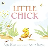 Little Chick by Amy Hest (2010-03-01)