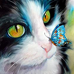 Pintura Diamante 5D Diamond Painting Cat 20 x 20 cm