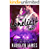 THE LONELIEST TOUR (A Brothers of Rock - WILLOW SON - novel)
