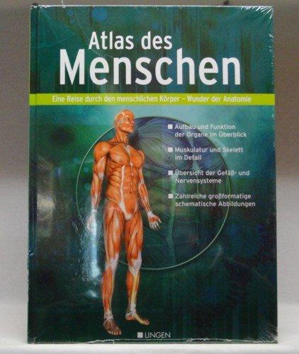 Atlas des Menschen. Eine Reise durch den menschlichen Körper - Wunder der Anatomie. Aufbau und Funktion der Organe im Überblick; Muskulatur und Skelett im Detail; ect. (Anatomie Skelett Atlas)