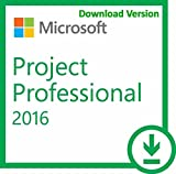 Microsoft Visio Professional 2016 Electronic Software Download (ESD))