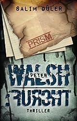 Peter Walsh :FURCHT, Teil 3 - Thriller (German Edition)