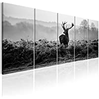 murando Impression sur Toile intissee Cerf 200x80 cm Tableau 5 Parties Tableaux Decoration Murale Photo Image Artistique Photographie Graphique Nature Animal Paysage g-B-0047-b-o