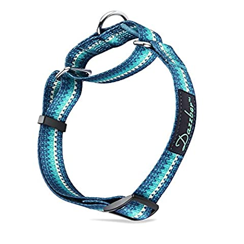 Dog Collar Durable Heavy Duty No Pull Adjustable Martingale Collar for Medium/Large Dogs By Dazzber