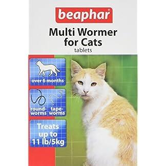 beaphar multiwormer tablets for cats Beaphar Multiwormer Tablets for Cats 51eY 2Be TgvL