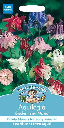 Unbeheizte Schale (Mr Fothergills Pilzsporen, Blume Akelei biedermeir, Mischung, 100 Samen)