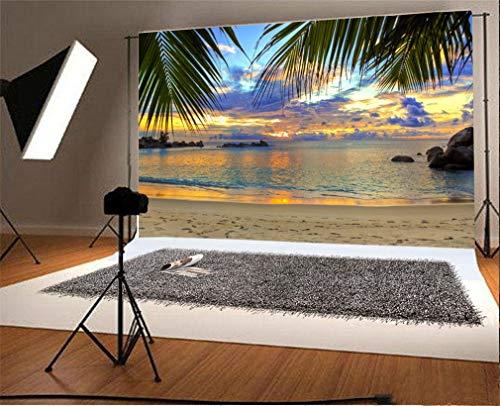 YongFoto 1,5x1m Foto Hintergrund Strand Sand Strand Kokosnuss Palmen Felsen Stones Sonnenuntergang Blauer Himmel e Natur Sommer Fotografie Hintergrund Photo Portrait Party Kinder Fotostudio