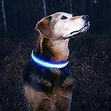 LESYPET LED Hundehalsband Wiederaufladbar - USB Wiederaufladbare Sicherheits LED Haustier Kragen mit Wasserdichtem Blinklicht, Blau, L