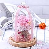 samLIKE Endlose konservierte Rosen Blume im Glas romantisches Geschenk Valentinstag Geburtstag (Rosa)