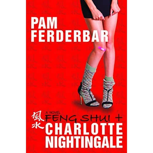 Feng Shui & Charlotte Nightingale by Pam Ferderbar (2015-12-01)