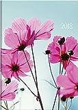 Brunnen 107951501 Buchkalender Modell 795, 1 Seite = 1 Tag, 145 x 206 mm, Grafik-Einband Summertime, Kalendarium 2018