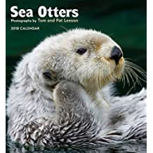 Sea Otters 2018 Wall Calendar