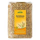Davert Sechs-Korn-Getreide (1 kg) - Bio