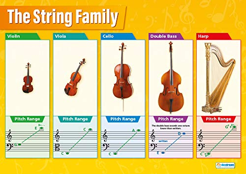 String Instruments Family | Musi...