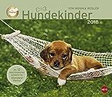 Wegler Hundekinder Maxi Postkartenkalender - Kalender 2018