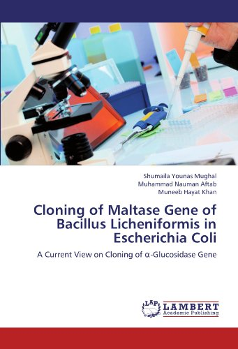 Cloning of Maltase Gene of Bacillus Licheniformis in Escherichia Coli: A Current View on Cloning of α-Glucosidase Gene