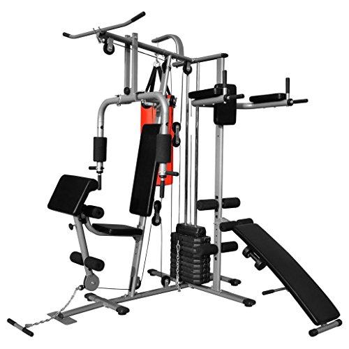 vidaXL Gimnasio Multifuncional Máquina Musculación Aparato...